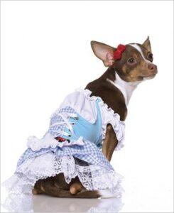 Dorothy 2 pc. 21010