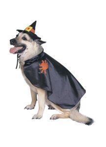 Witch 50316